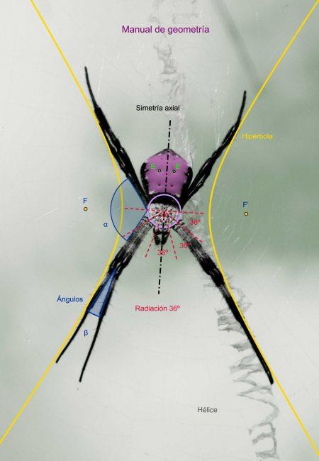 30e_Manual de geometria_1